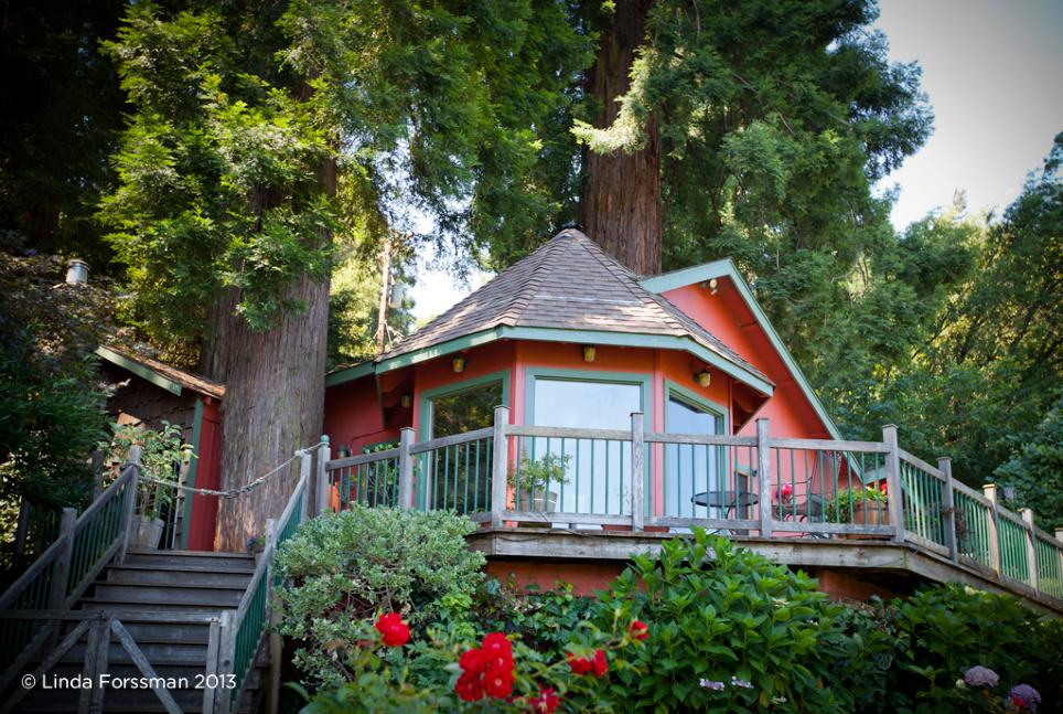 Located near Healdsburg, Calif., the Redwood Tree House is perfect for vacationers in need of a quiet retreat.