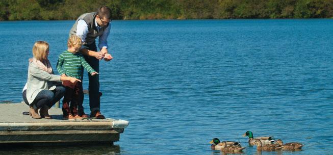 Lake Melton Park in Oak Ridge, TN