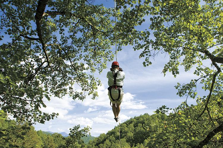 Sports & Recreation in Asheville