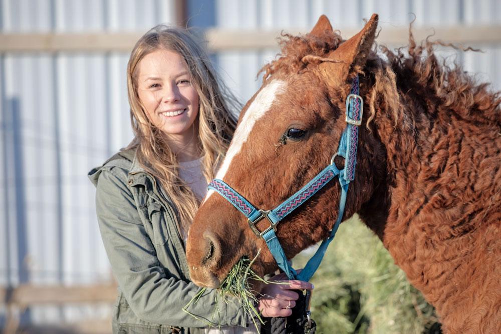 WY|Wild Horse Wyoming|Wild Horse adoptions Wyoming